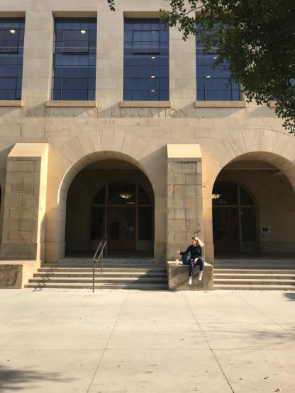 Stanford, Silikon Vadisi, sanat tarihi, Nemerov