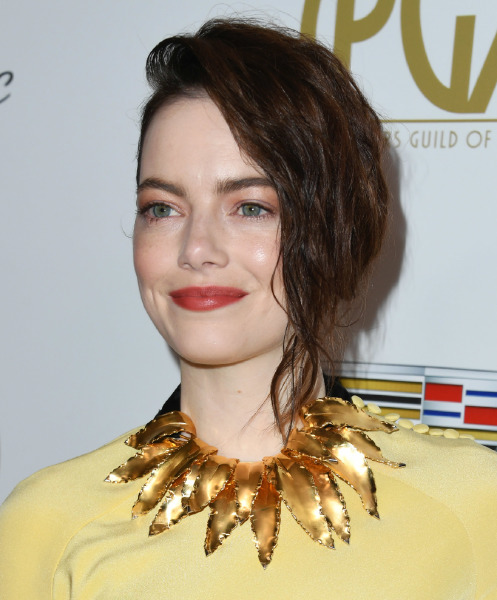 emma-stone-30th-annual-producers-guild-awards-red-carpet-beauty-make-up-hair-style-colour