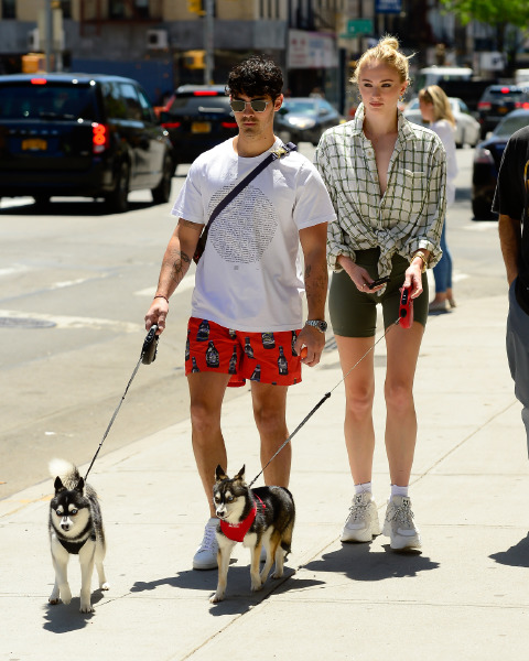 sophie,turner,joe,jonas